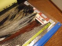 coc_big_folder_feathers1.jpg